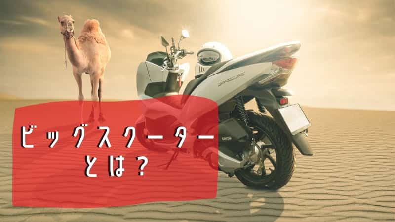ビッグスクーターとは?150cc250cc400cc大型のスクーター紹介