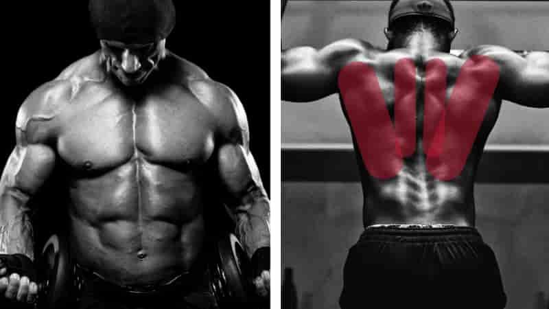 ワイドグリップチンニング懸垂で鍛えられる筋肉