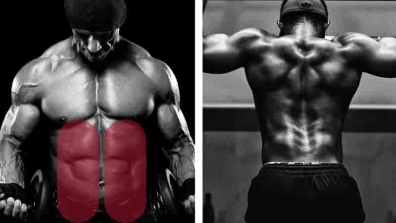 レッグレイズで鍛えられる筋肉