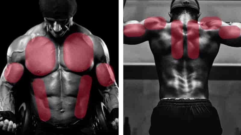 プッシュアップ腕立て伏せで鍛えられる筋肉